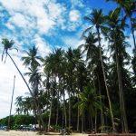 Een verre strandvakantie; dit zijn de perfecte locaties