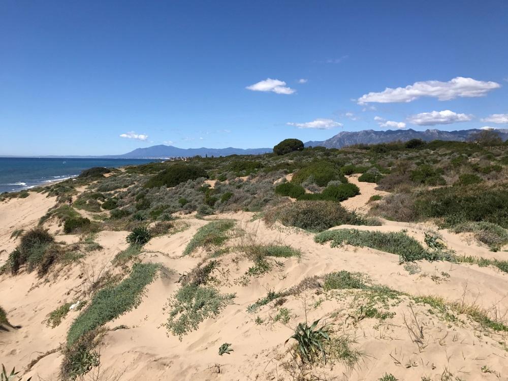 mooiste strand andalusie - Playa de Artola